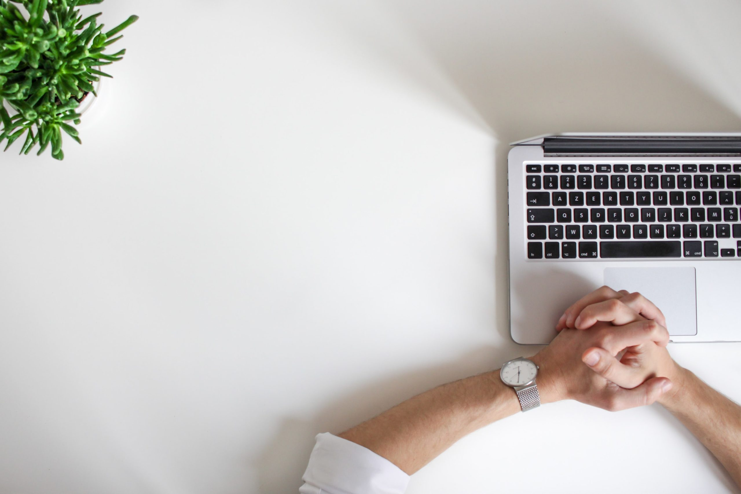 Hands hover over a laptop on a clean white desk with a plant in view.